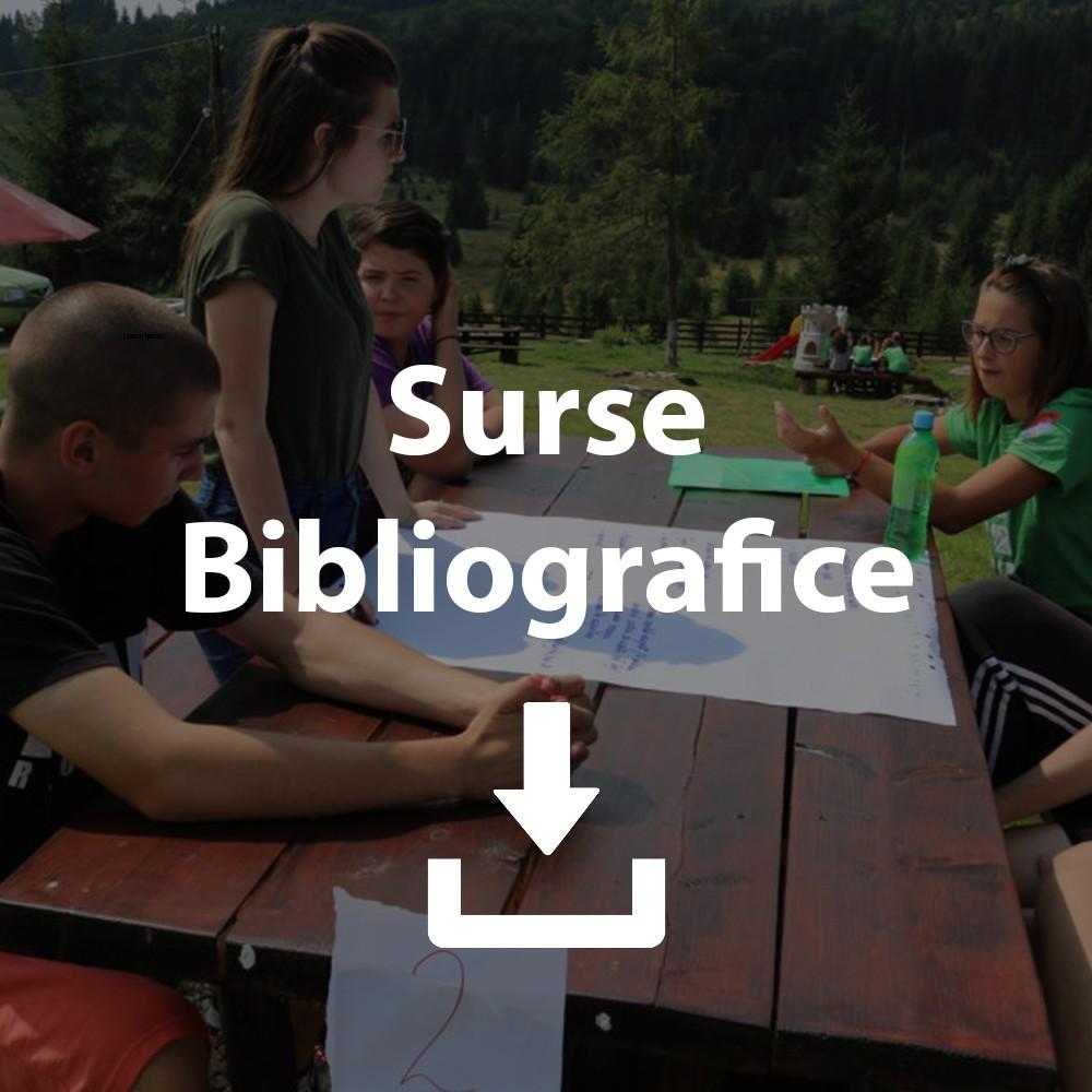 https://www.standarde-tineret.ro/wp-content/uploads/2019/03/Cercetare-UE.pdf